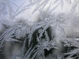 Ice crystals on my car windshield, shot 1.